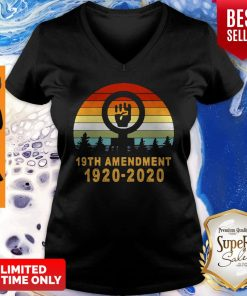 Pretty Vintage 19th Amendment 1920 2020 V-neck