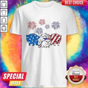Official Hedgehogs Firework American Flag Independence Day Shirt
