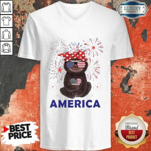 Top Sloth Woman Independence Day America V-neck
