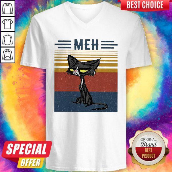 Awesome Cat Meh Vintage V-neck