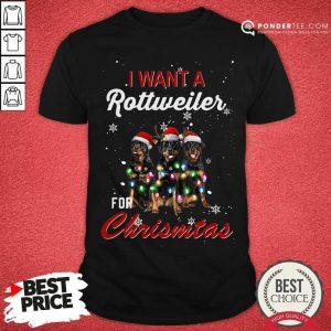 I Want A Rottweiler For Christmas Shirt - Desisn By Pondertee.com