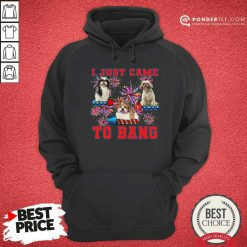 Shih Tzu Just Came To Bang 4th Of July Hoodie