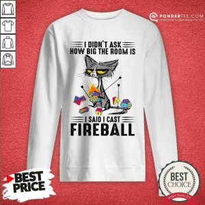 Cat I Didn't Ask How Big The Room Was I Said I Cast Fireball SweatShirt